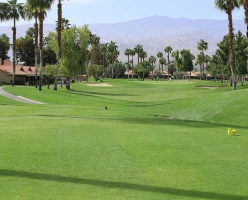 Chaparral Golf Course Palm Desert