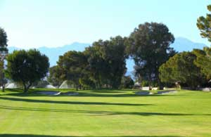 Palm Desert Golf - Hole 10
