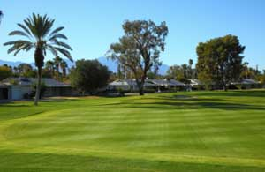 Palm Desert Golf - Hole 7