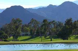Palm Desert Golf - Hole 8