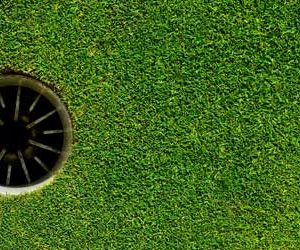 The Growth of Eco-Friendly Golf Course Design